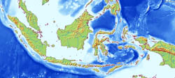 Large relief map of Indonesia.