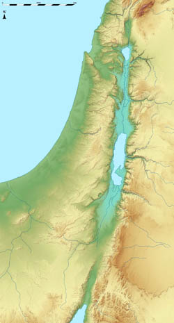 Large relief map of Israel.