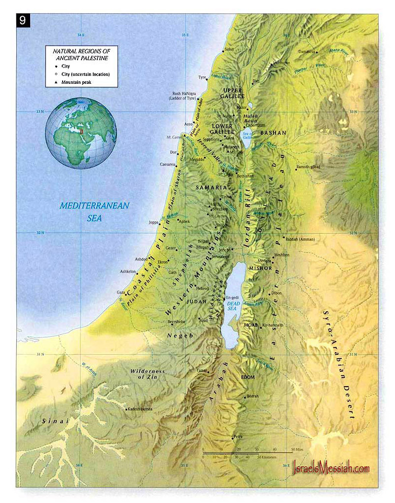 Maps Of Palestine Detailed Map Of Palestine In English Tourist - Map of palestine