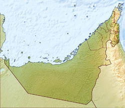 Large relief map of UAE.
