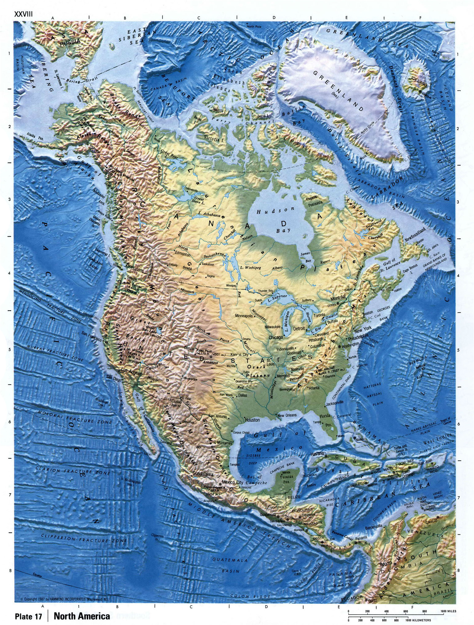 Maps Of North America And North American Countries Political - North america relief map
